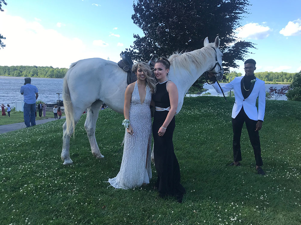 White horse photoshoot at the prom