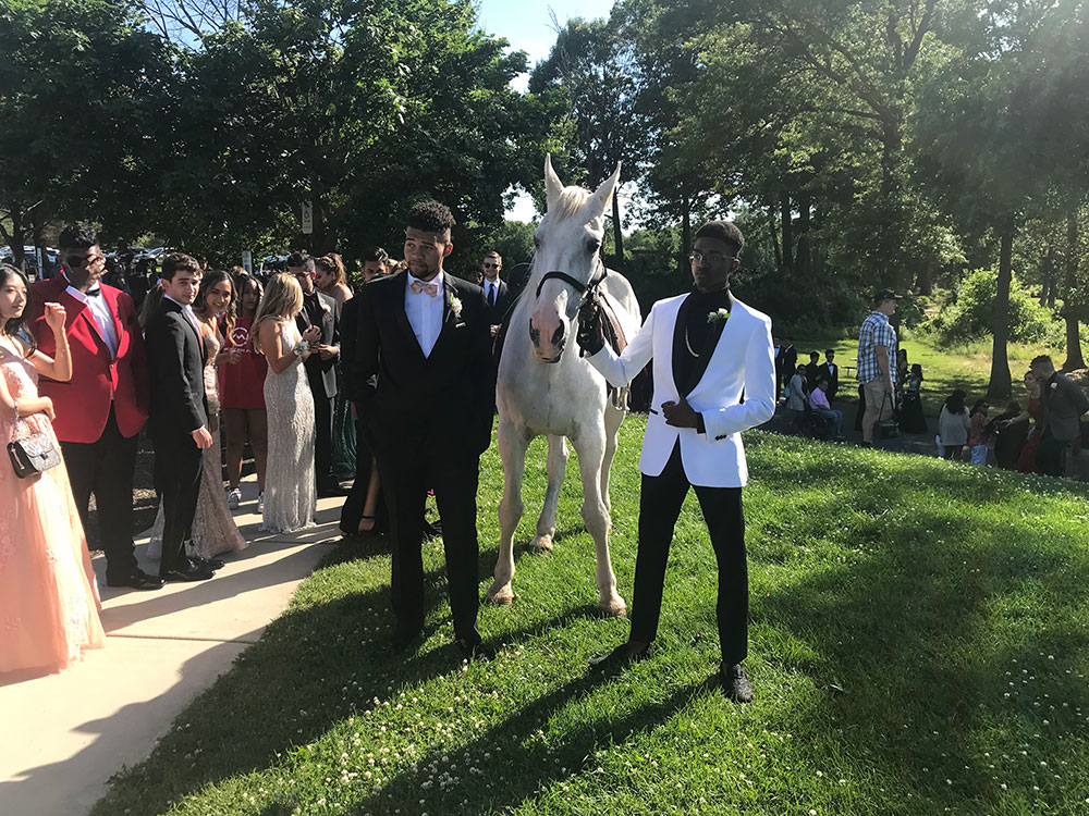 At the promo with a horse